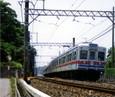 07 Oosakura_3150 73K 940610